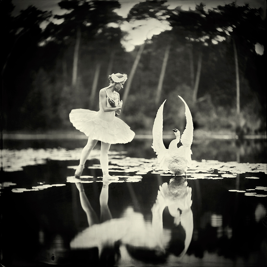 Ballerina looking at a swan on a lake