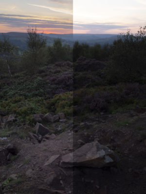 Raw processing, dynamic range recovery on left, vs original raw file on right. 1/60s, f/8, ISO640, -0.7EV, 16mm