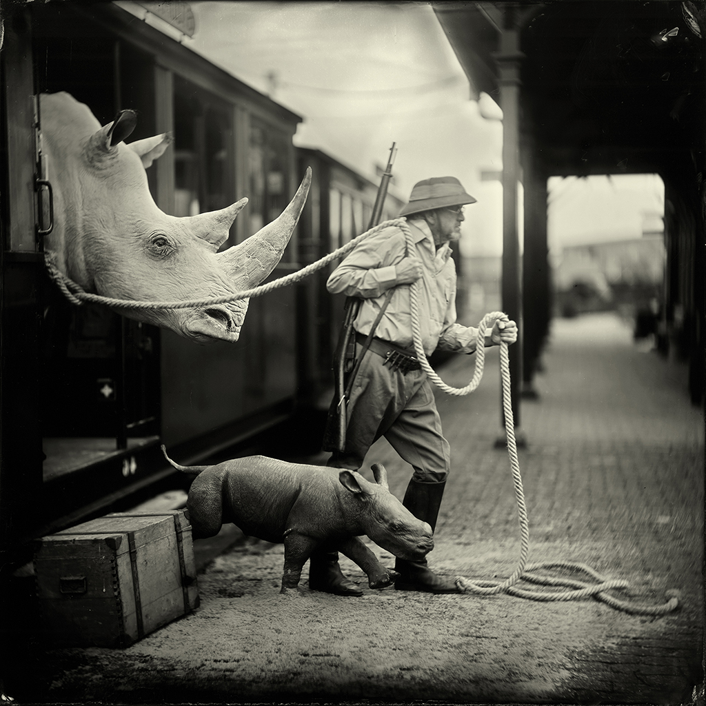Wet-plate photograph by Alex Timmermans, black and white showing a man and a rhino.