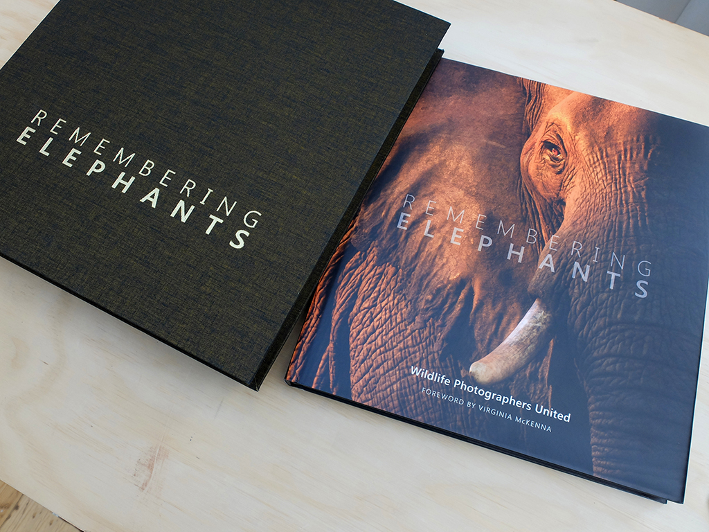 remembering elephants photo book cover