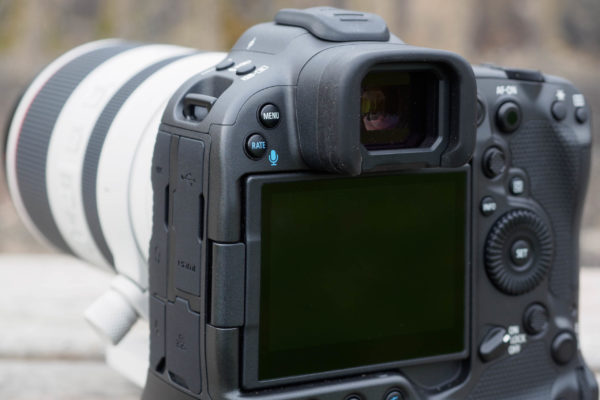 The Canon EOS R3 is a motorsports monster 4