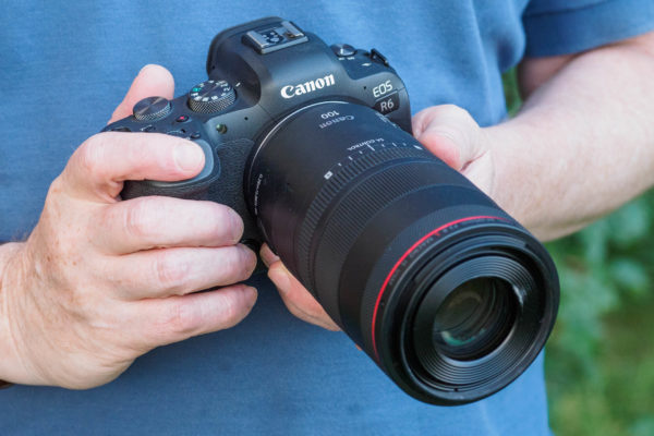 Canon RF 100mm F2.8L IS Macro USM on Canon EOS R6