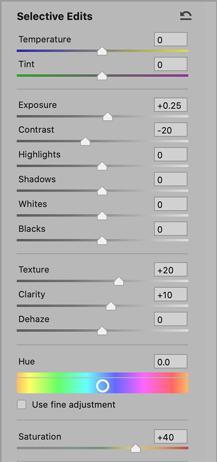 How to use Graduated Filter adjustments in Camera Raw 6