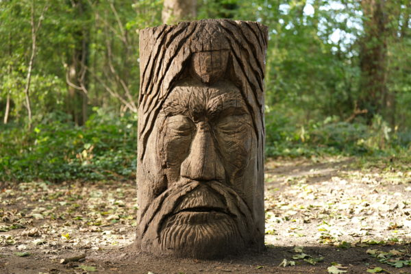 Wooden head, 1/80s, f/2.8, ISO250, Sony 70-200mm at 70mm, with Sony A1